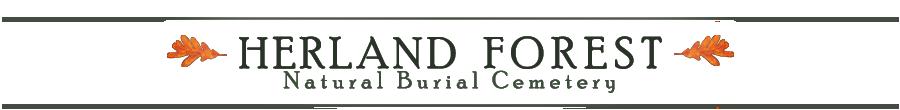 Herland Forest